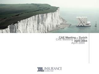 CAE Meeting – Zurich April 2004