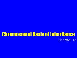 Chromosomal Basis of Inheritance