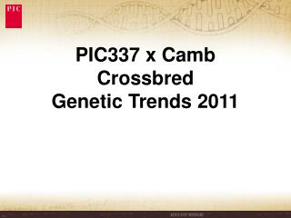 PIC337 x Camb Crossbred Genetic Trends 2011