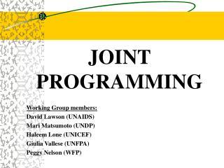 JOINT PROGRAMMING Working Group members: David Lawson (UNAIDS) Mari Matsumoto (UNDP)