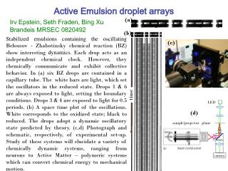 Active Emulsion droplet arrays