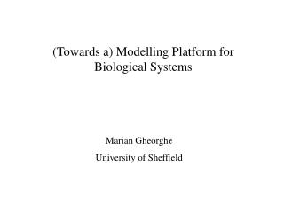 (Towards a) Modelling Platform for Biological Systems