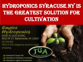 Hydroponics Syracuse NY is the Greatest Solution for Cultiva