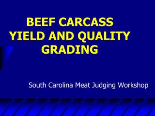 BEEF CARCASS YIELD AND QUALITY GRADING