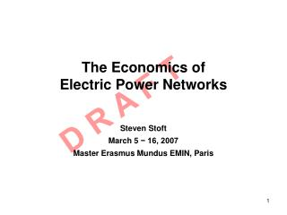 The Economics of Electric Power Networks