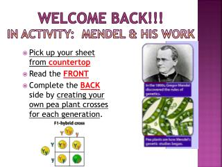WELCOME BACK!!! In Activity:  Mendel & His Work