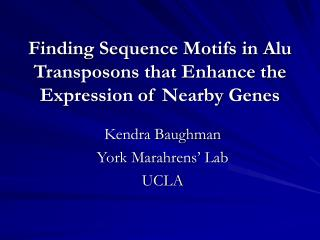 Finding Sequence Motifs in Alu Transposons that Enhance the Expression of Nearby Genes
