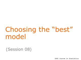 "Choosing the ""best"" model"