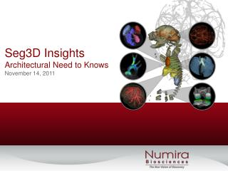 Seg3D Insights Architectural Need to Knows November 14, 2011