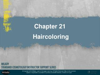 Chapter 21  Haircoloring