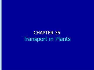 CHAPTER 35 Transport in Plants