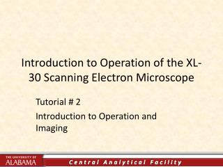 Introduction to Operation of the XL-30 Scanning Electron Microscope