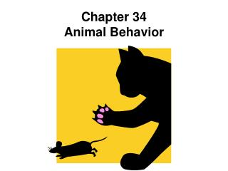 Chapter 34 Animal Behavior