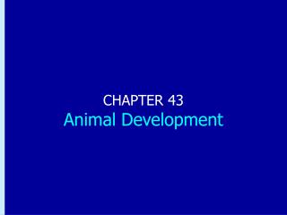 CHAPTER 43 Animal Development