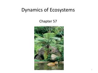 Dynamics of Ecosystems Chapter 57