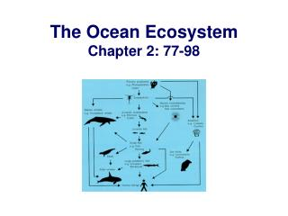 The Ocean Ecosystem Chapter 2: 77-98
