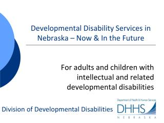 Developmental Disability Services in Nebraska – Now & In the Future
