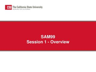 SAM99 Session 1 - Overview