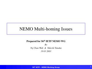 NEMO Multi-homing Issues