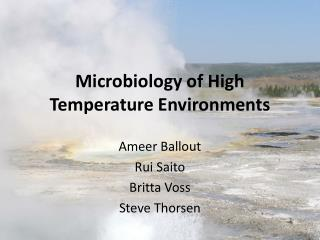 Microbiology of High Temperature Environments