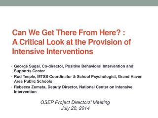 Can We Get There From  Here? :  A  Critical Look at the Provision of Intensive Interventions