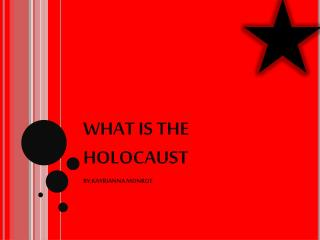 WHAT IS THE HOLOCAUST