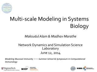 Multi-scale Modeling in Systems Biology