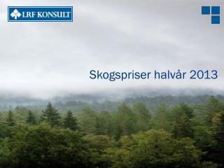 Skogspriser halvår 2013
