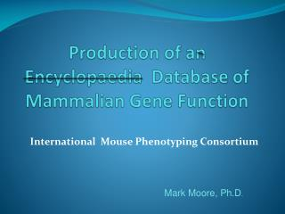 Production of an Encyclopaedia  Database of Mammalian Gene Function