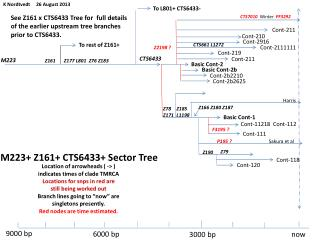 M223+ Z161+ CTS6433+ Sector Tree