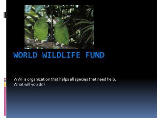 World Wildlife fund Fund
