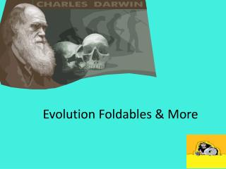 Evolution  Foldables  & More