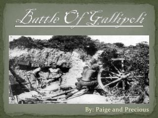 Battle Of Gallipoli