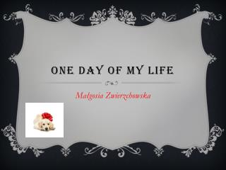 One Day of my life