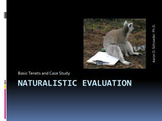 Naturalistic Evaluation
