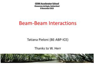 Beam -Beam  Interactions