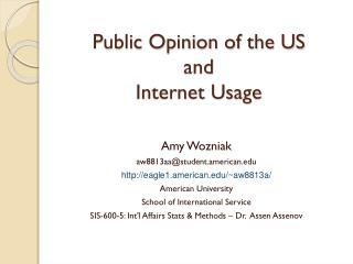 Public Opinion of the US and  Internet Usage