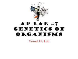 AP Lab #7 Genetics of Organisms