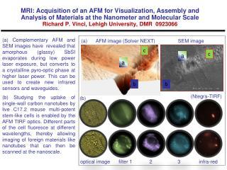 (a) AFM image (Solver NEXT) SEM image