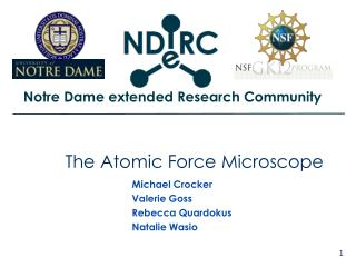 The Atomic Force Microscope