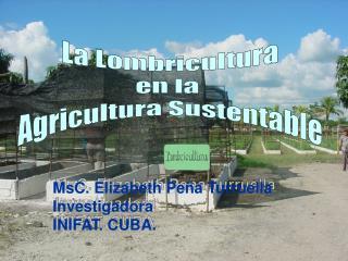 La Lombricultura en la  Agricultura Sustentable