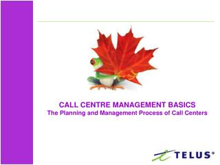CALL CENTRE MANAGEMENT BASICS The Planning and Management Process of Call Centers