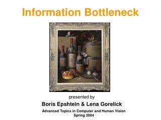 Information Bottleneck