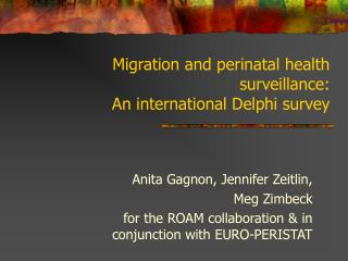 Migration and perinatal health surveillance: An international Delphi survey