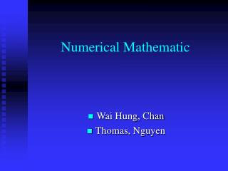 Numerical Mathematic