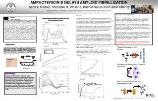 AMPHOTERICIN B DELAYS AMYLOID FIBRILLIZATION