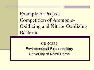 Example of Project Competition of Ammonia-Oxidizing and Nitrite-Oxidizing Bacteria