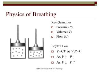 Physics of Breathing