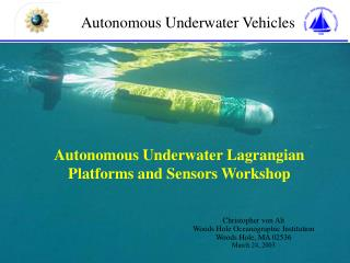 Autonomous Underwater Vehicles