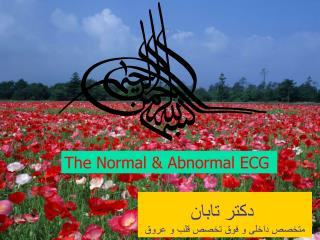 The Normal & Abnormal ECG